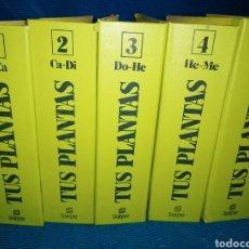 Enciclopedias: TUS PLANTAS, FICHERO PRÁCTICO SARPE. FICHERO 1,2,3,4,5. Lote 254829410