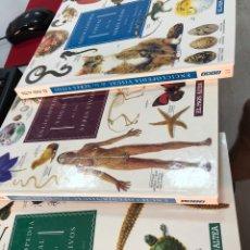 Enciclopedias: LOTE ENCICLOPEDIA VISUAL COMPLETA TRES TOMOS SERES VIVOS EL PAIS ALTEA. Lote 269846528