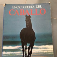 Livros: ENCICLOPEDIA DEL CABALLO - BLUME. Lote 274843073