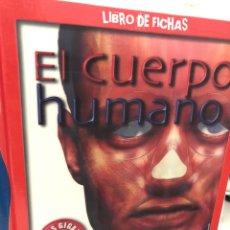 Enciclopedias: SUSAETA EL CUERPO HUMANO LIBRO DE FICHAS CON DOS PÓSTERS GIGANTES. Lote 281875518