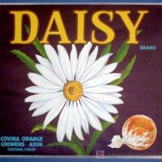 Etiquetas antiguas: ETIQUETA NARANJAS. DAISY. COVINA ORANGE GROWERS ASSN. CALIFORNIA, SIN FECHA.. Lote 73127050
