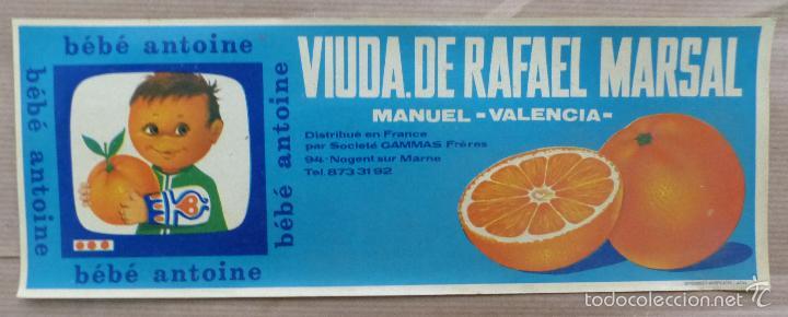 25 ANTIGUAS ETIQUETAS DE NARANJAS - BEBE ANTOINE, VIUDA RAFAEL MARSAL - MANUEL, VALENCIA (Coleccionismo - Etiquetas)