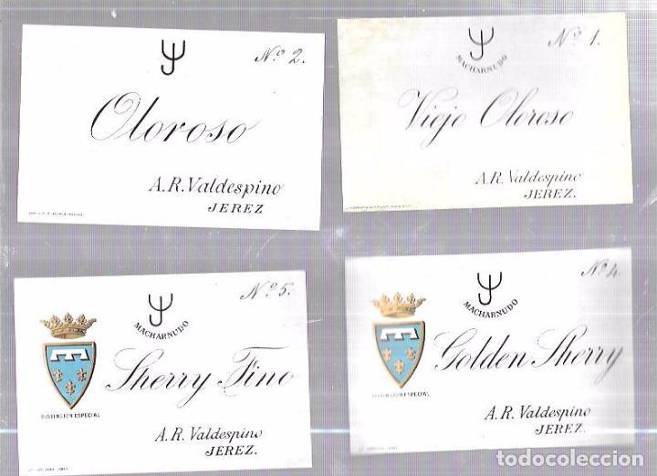 Etiquetas antiguas: LOTE DE 33 ETIQUETAS DE VALDESPINO. JEREZ. - Foto 3 - 62338916