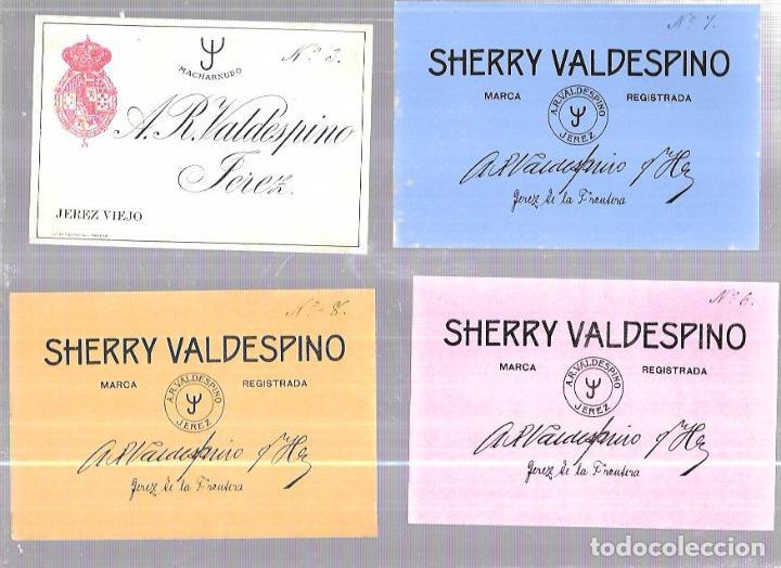 Etiquetas antiguas: LOTE DE 33 ETIQUETAS DE VALDESPINO. JEREZ. - Foto 4 - 62338916
