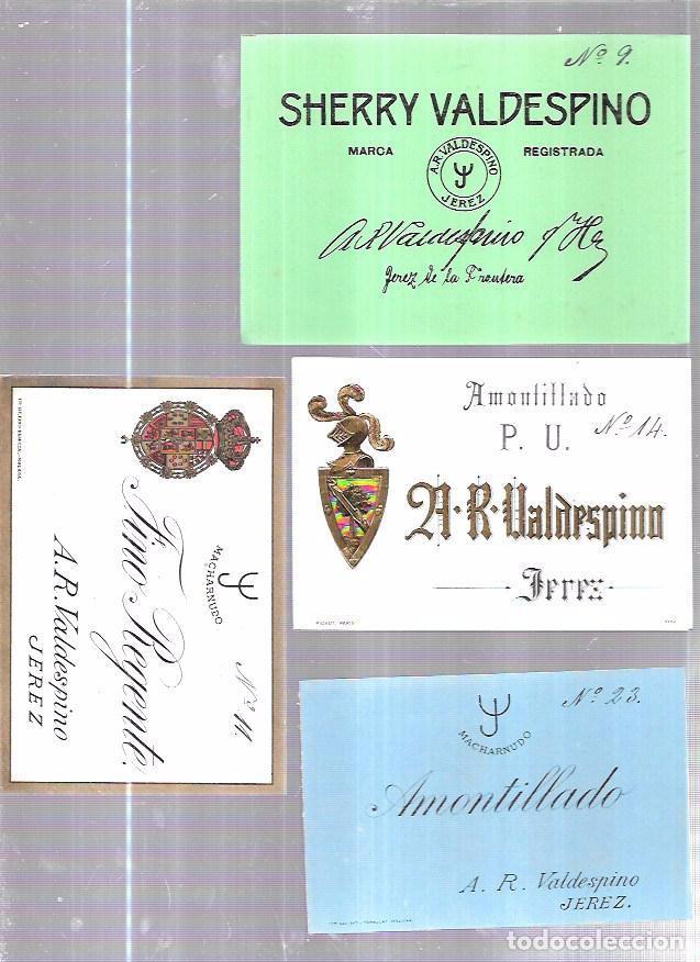 Etiquetas antiguas: LOTE DE 33 ETIQUETAS DE VALDESPINO. JEREZ. - Foto 8 - 62338916