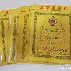 Etiquetas antiguas: LOTE DE 50 ETIQUETAS DE BRANDY VIEJISIMO. ATANE. JEREZ DE LA FRONTERA. 10 X 13CM. Lote 97563235