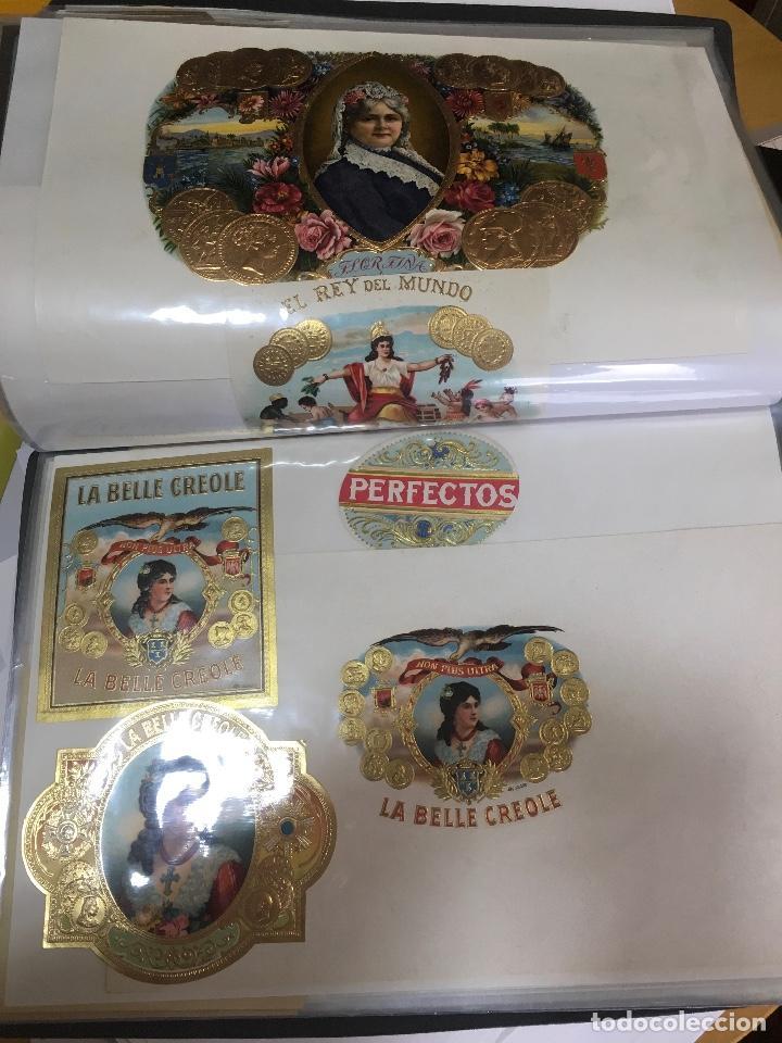 Etiquetas antiguas: COLECCION DE 89 HABILITACIONES O ETIQUETAS PARA CAJAS DE PUROS TROQUELADAS EN SU MAYORÍA. MUY RARAS! - Foto 15 - 107491375