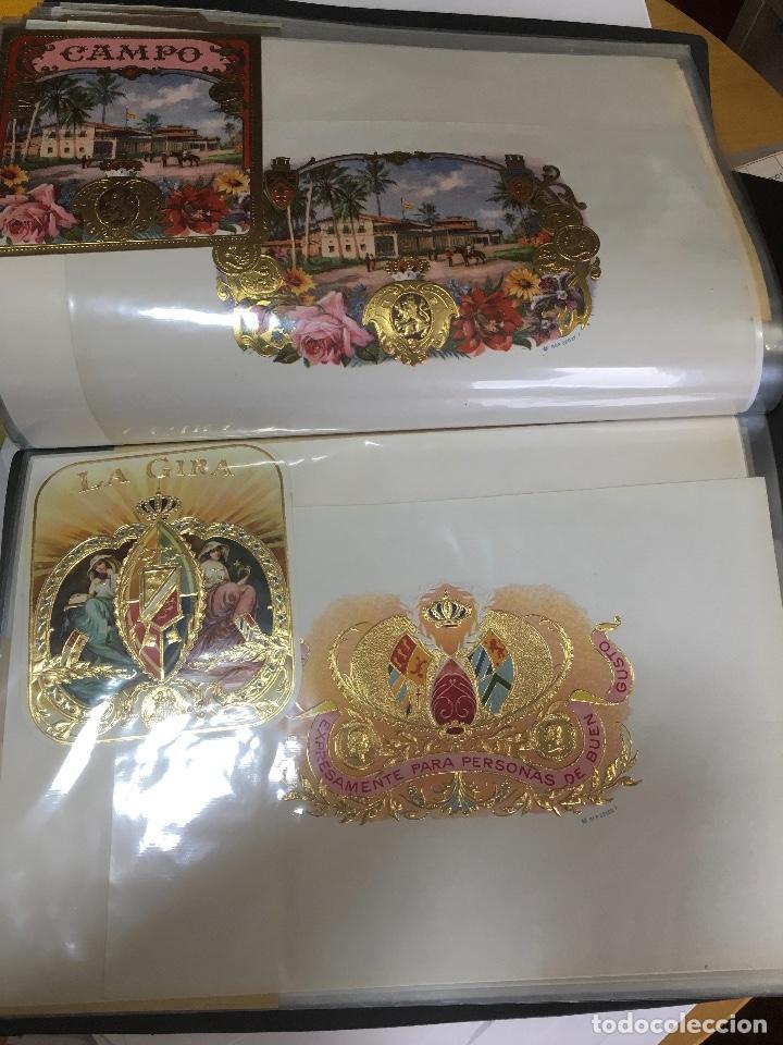 Etiquetas antiguas: COLECCION DE 89 HABILITACIONES O ETIQUETAS PARA CAJAS DE PUROS TROQUELADAS EN SU MAYORÍA. MUY RARAS! - Foto 19 - 107491375