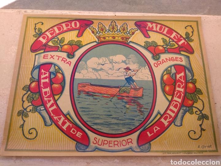 Etiquetas antiguas: Etiqueta de Naranjas Pedro Mulet - Albalat de la Ribera - Valencia - firma A.Carot - - Foto 2 - 152761002
