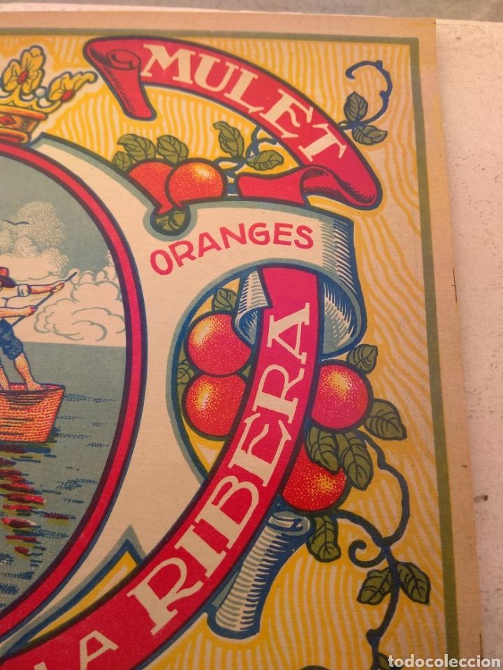 Etiquetas antiguas: Etiqueta de Naranjas Pedro Mulet - Albalat de la Ribera - Valencia - firma A.Carot - - Foto 3 - 152761002