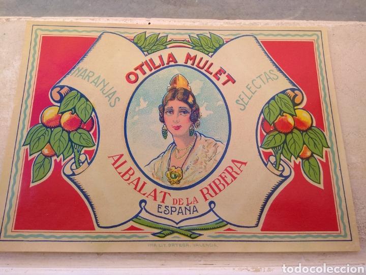 Etiquetas antiguas: Etiqueta de Naranjas Otilia Mulet - Albalat de la Ribera - Valencia - - Foto 2 - 152761656