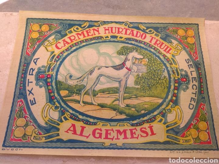 Etiquetas antiguas: Etiqueta de Naranjas Carmen Hurtado Trull - Algemesí - Valencia - firma Duvón - - Foto 2 - 152762577