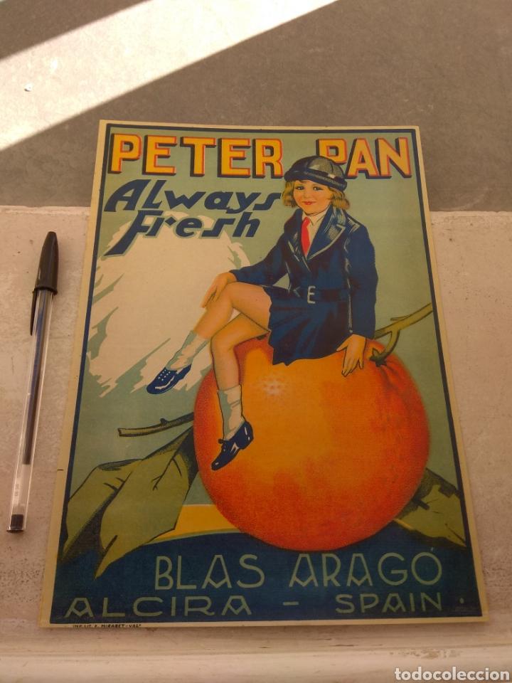 ETIQUETA DE NARANJAS PETER PAN ALWAYS FRESH - BLAS ARAGÓ - ALCIRA - VALENCIA - (Coleccionismo - Etiquetas)