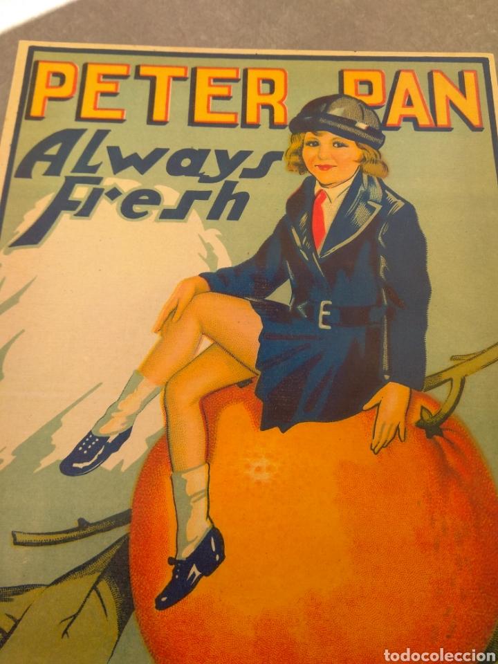 Etiquetas antiguas: Etiqueta de Naranjas Peter Pan Always Fresh - Blas Aragó - Alcira - Valencia - - Foto 3 - 152763488