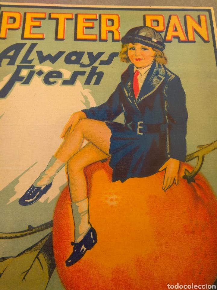 Etiquetas antiguas: Etiqueta de Naranjas Peter Pan Always Fresh - Blas Aragó - Alcira - Valencia - - Foto 4 - 152763488
