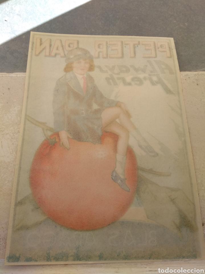 Etiquetas antiguas: Etiqueta de Naranjas Peter Pan Always Fresh - Blas Aragó - Alcira - Valencia - - Foto 5 - 152763488