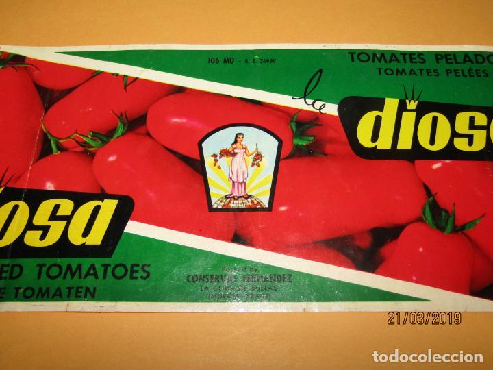 Etiquetas antiguas: Antigua Etiqueta de Bote de Tomate LA DIOSA de Conservas Fernández LA COPA DE BULLAS - Año 1970s. - Foto 2 - 156404806