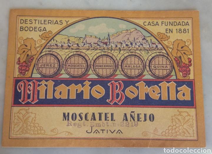 Etiquetas antiguas: Etiqueta Moscatel Añejo Hilario Botella - Játiva - Xátiva - Valencia - - Foto 3 - 160312850