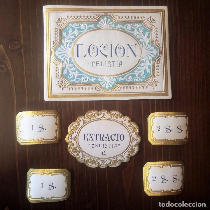 Celestina. Lote de etiquetas de perfumería. Loción., extracto, Celestina. - 163839694