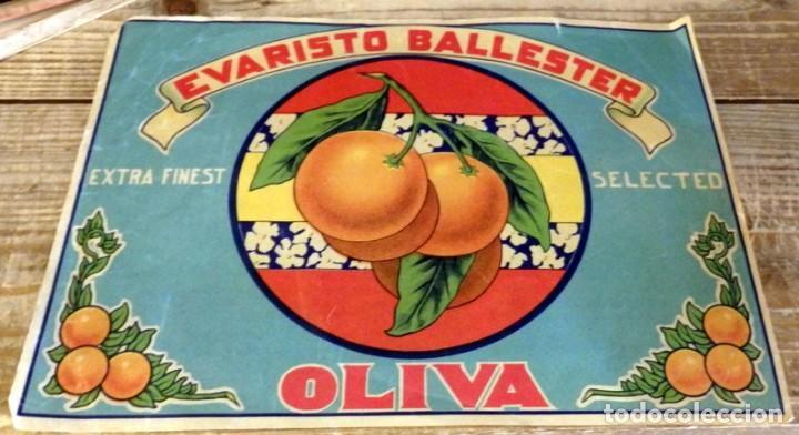 ETIQUETA NARANJA-OLIVA - EVARISTO BALLESTER.-265 X 190 MM- (Coleccionismo - Etiquetas)