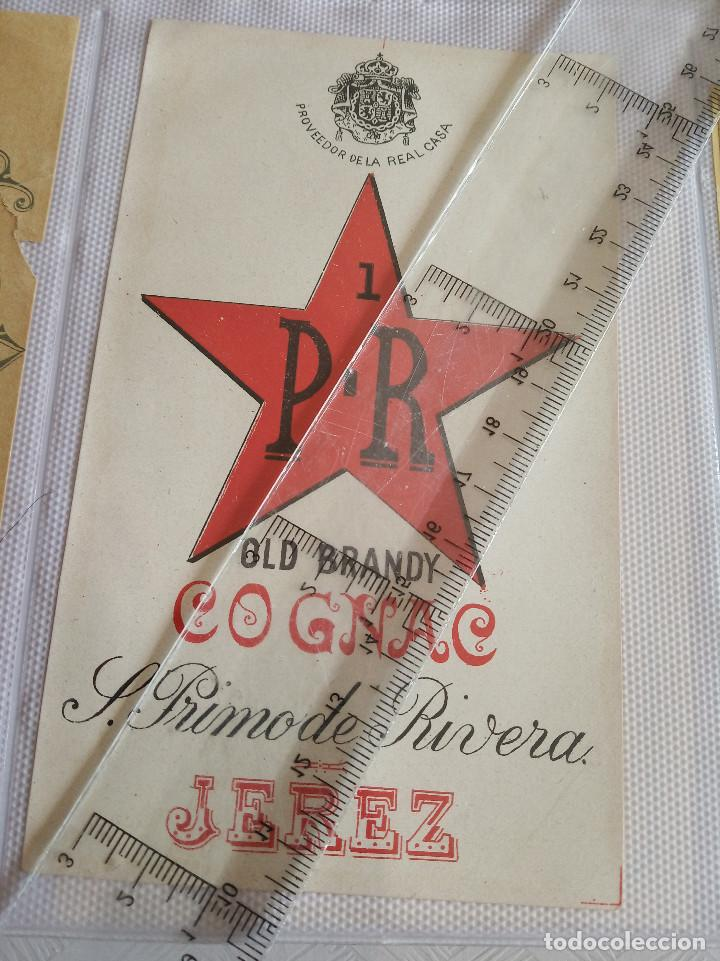 ETIQUETA - P.R OLD BRANDY COÑAC - S.PRIMO DE RIVERA - JEREZ - (Coleccionismo - Etiquetas)
