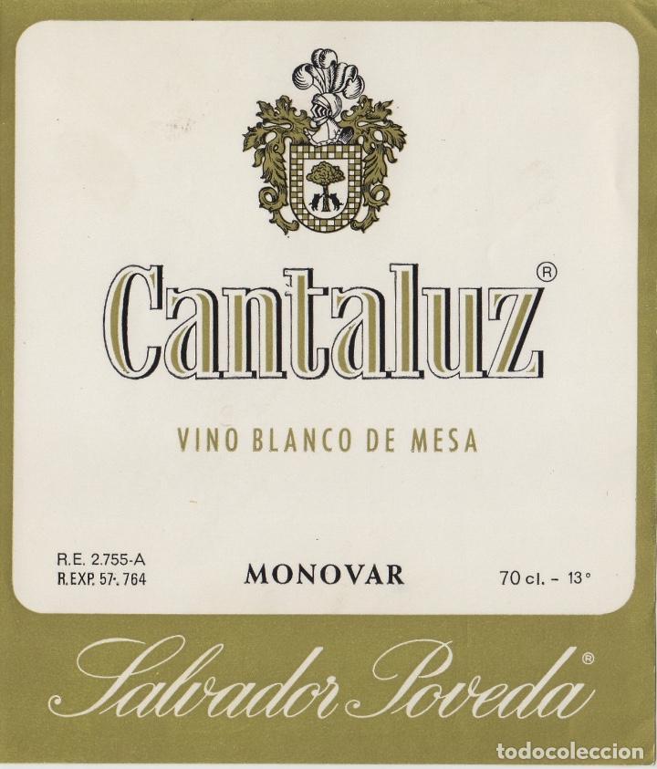 ALICANTE CANTALUZ MONOVAR , POVEDA . ETIQUETA DE VINO REF 17 (Coleccionismo - Etiquetas)