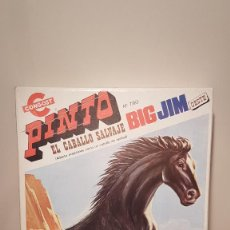 Figuras de acción - Big Jim: BIG JIM CABALLO SALVAJE PINTO. Lote 146770454