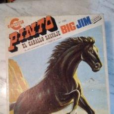 Figuras de acción - Big Jim: BIG JIM. PINTO. CABALLO SALVAJE. CONGOST. A ESTRENAR. Lote 178759753