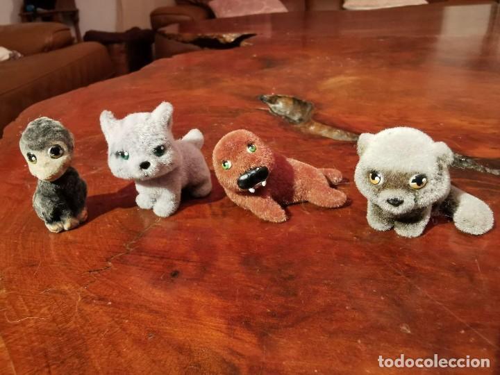 4 ANIMALES DE TERCIOPELO, FOCA, MAPACHE, MONITO, LINCE (Juguetes - Figuras de Acción - Otras Figuras de Acción)