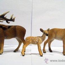 Figuras de Goma y PVC Schleich: FAMILIA DE CIERVOS . Lote 53289714