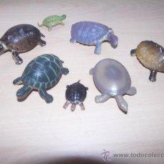 Figuras de Goma y PVC: SET FIGURAS ANIMALES - TORTUGAS -. Lote 28544340