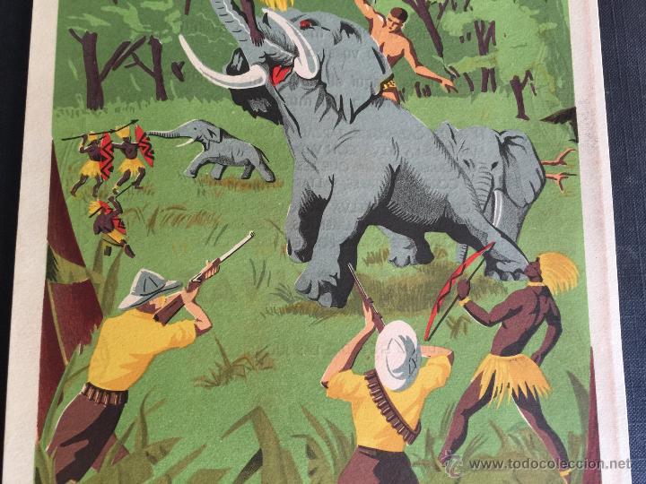 Figuras de Goma y PVC: Cartel doble de publicidad ARCLA - Africa salvaje años 50 - Con texto por detras - Perfecto - Foto 6 - 48009340