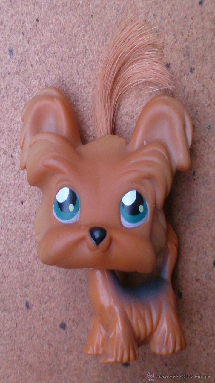 Figura Lps Hasbro Perro Dog Shih Tzu 6 Kaufen Andere Figuren Aus