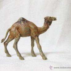 Figuras de Goma y PVC: DROMEDARIO DE PLASTICO DEL CIRCO O DE LA SELVA - CAMELLO. Lote 50616931