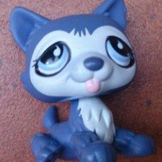 Figuras de Goma y PVC: FIGURA LPS HASBRO PERRO HUSKY 785. Lote 53105849