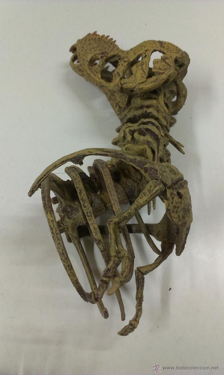Figuras de Goma y PVC: ESQUELETO DE DINOSAURIO . TIRANOSAURIO REX . - Foto 14 - 53990945