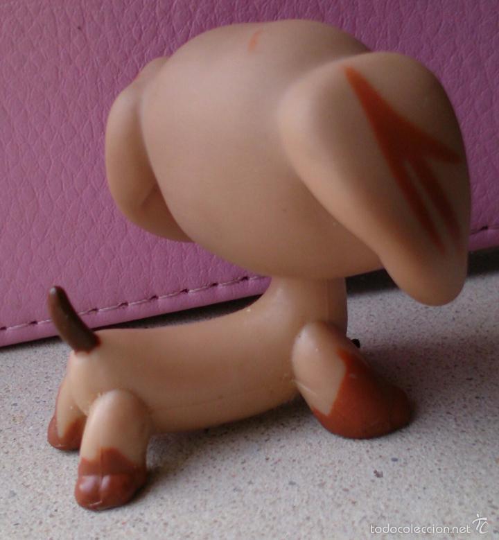 Figuras de Goma y PVC: Figura LPS Hasbro perro salchicha Teckel Dachshund 518 - Foto 3 - 159417697