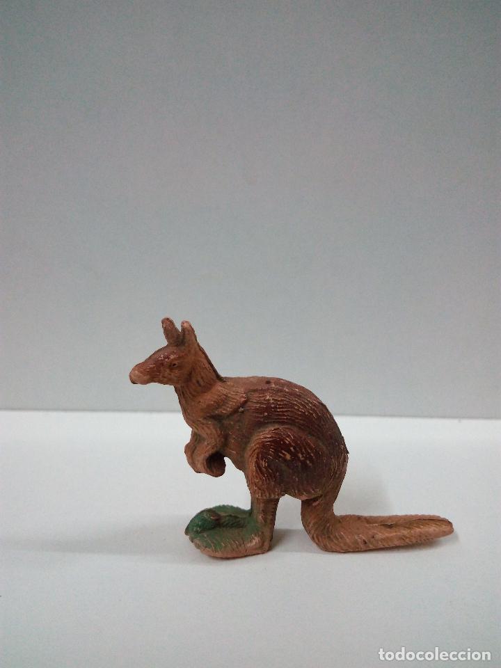 Figuras de Goma y PVC: CANGURO . SERIE FIERAS . PECH . AÑOS 50 EN GOMA - Foto 2 - 70481009
