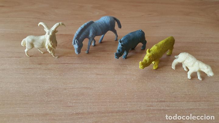 Figuras de Goma y PVC: lote 23 figuras animales persan y otras años 60s + regalo 12 figuras goma indios, soldados etc - Foto 12 - 85289532