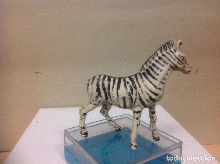 Figuras de Goma y PVC: FIGURA CEBRA GOMA PECH HERMANOS - serie fieras zoo africa frofunda jecsan años 50 - Foto 3 - 91411330