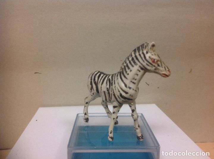 Figuras de Goma y PVC: FIGURA CEBRA GOMA PECH HERMANOS - serie fieras zoo africa frofunda jecsan años 50 - Foto 4 - 91411330