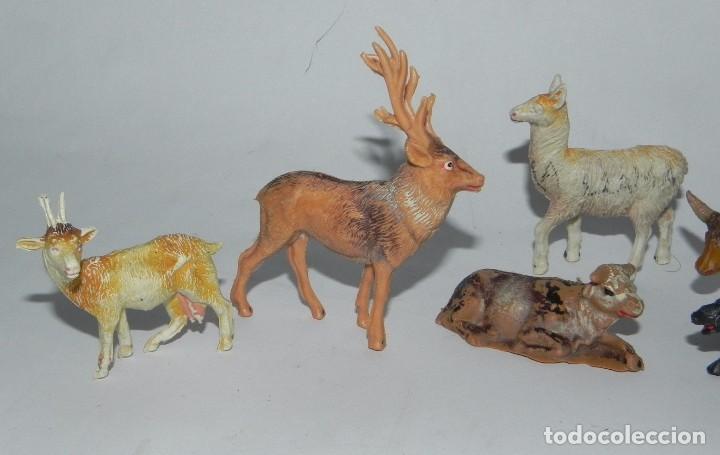 Figuras de Goma y PVC: 6 FIGURAS DE ANIMALES DE PLASTICO, POSIBLEMENTE PECH. JABALI, VACA, CIERVO, LLAMA, CABRA, BUEY. - Foto 2 - 91703490