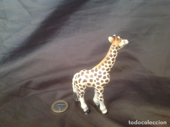 Figuras de Goma y PVC: Figura pvc antigua schleich 1998 cría de jirafa - Foto 2 - 93661515