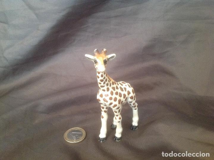 Figuras de Goma y PVC: Figura pvc antigua schleich 1998 cría de jirafa - Foto 4 - 93661515