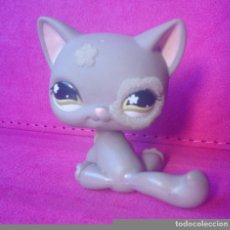 Figuras de Goma y PVC: FIGURA LPS LITTLEST PET SHOP HASBRO 467 GATO GRIS CAT GREY . Lote 105160483