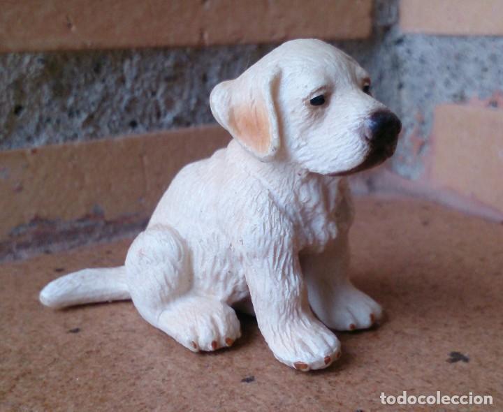 Figura Schleich Perro Golden Retriever Labrador Kaufen Figuren Aus