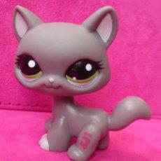 Figuras de Goma y PVC: FIGURA LPS LITTLEST PET SHOP HASBRO GATO CAT 1059. Lote 107831283