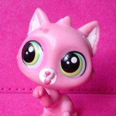 Figuras de Goma y PVC: FIGURA LPS LITTLEST PET SHOP HASBRO GATO ROSA CAMI CAT 3880. Lote 108309191
