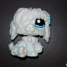 Figuras de Goma y PVC: LITTLEST PET SHOP PERRO LPS. Lote 109494243