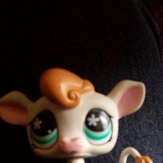 Figuras de Goma y PVC: LITTLE PET SHOP HASBRO 2007. Lote 110712038